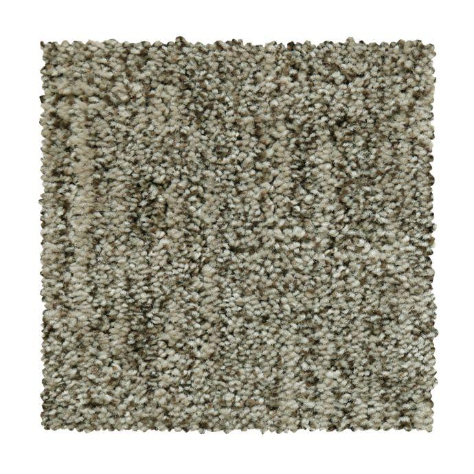 Carpet AntiqueComfort 2V40-860 RusticBeam