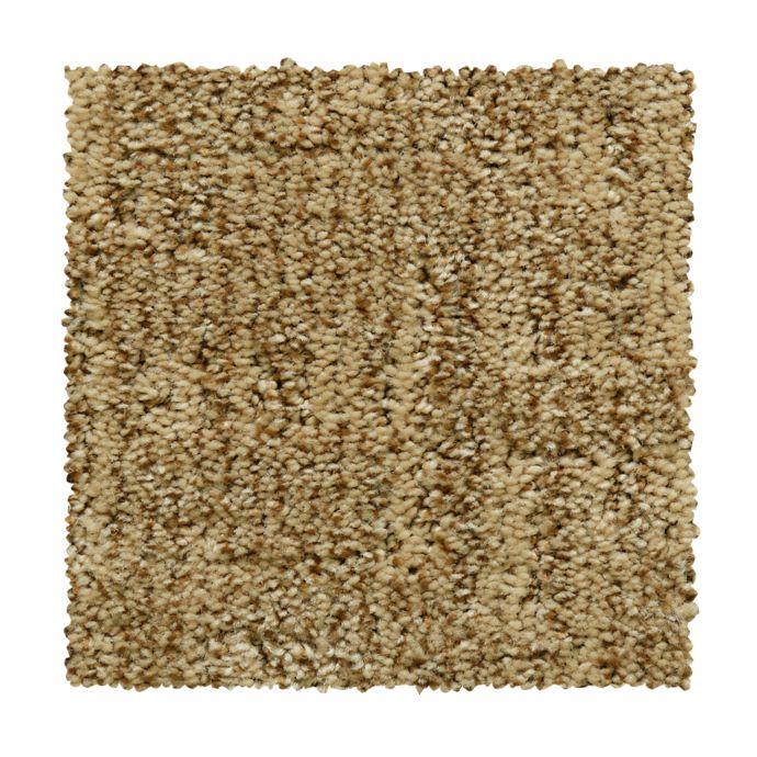 Carpet AntiqueComfort 2V40-862 FreshEarth