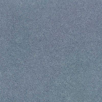 Oak Grove Delphinium
