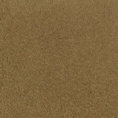 Textural Treat Colonial Brown