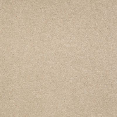 Peaceful Palette Universal Tan
