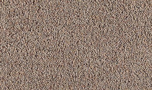 Serene Selection Carpet Sepia Tone Carpeting Mohawk