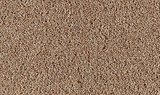 Achiever Carpet Buckwheat Carpeting Mohawk Flooring