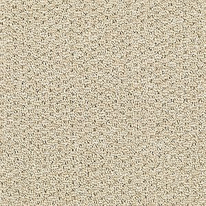 amazingly smartstrand carpet has a uniquely soft feel that thatu0027s unmatched even polyesters donu0027t come close to the softness of smartstrand carpets