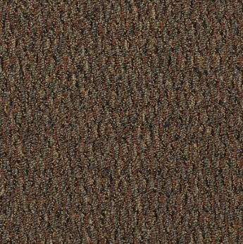 Carpet All-Terrain 8490-102 CopperSprings