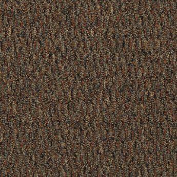 Carpet All-Terrain 8490-102 CopperSprings