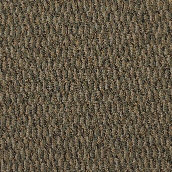 Carpet All-Terrain 8490-106 Summerland