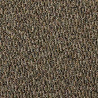 Carpet All-Terrain 8490-106 Summerland