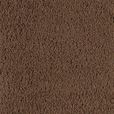 Popular Demand Woodland Brown