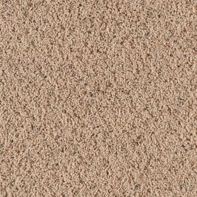 Spring Breeze Coastal Beige