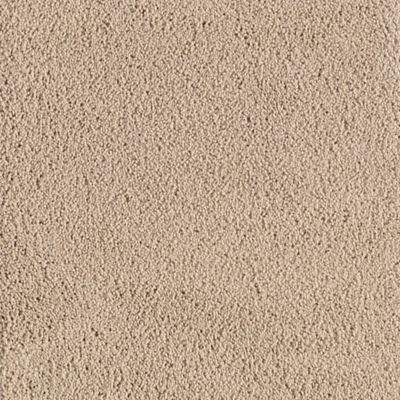 American Beauty Antique Beige