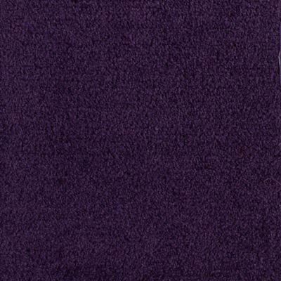 Salsa Lavender