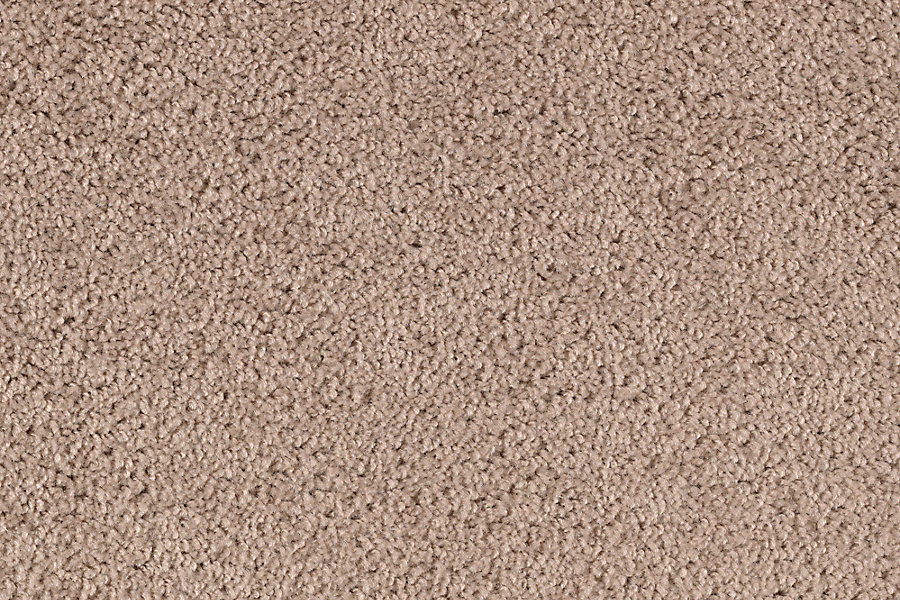 Neutral Ground Brown Sugar Mohawk Carpet Rite Rug
