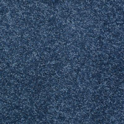 Favorite Memory Blue Canopy
