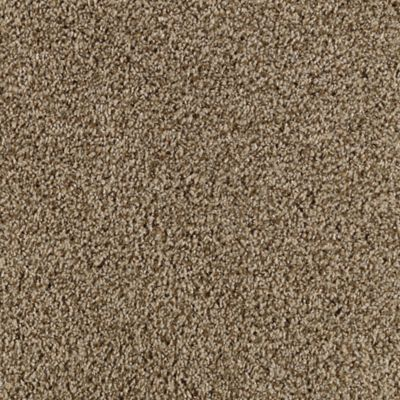 Thriller Coastal Beige