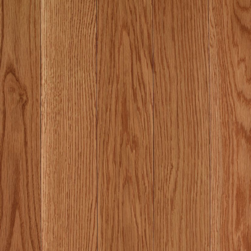 "Hardwood Andale 3.25"" Oak Golden  main image"