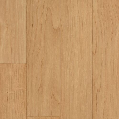 Laminate Carrolton Natural Maple Strip   main image