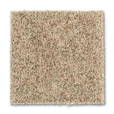 Serene Selection Carpet Spiced Rum Carpeting Mohawk