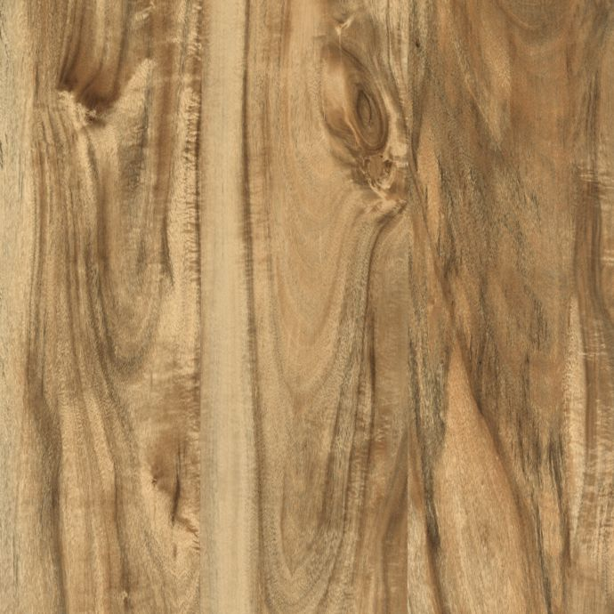 Cammeray Natural Acacia 02136