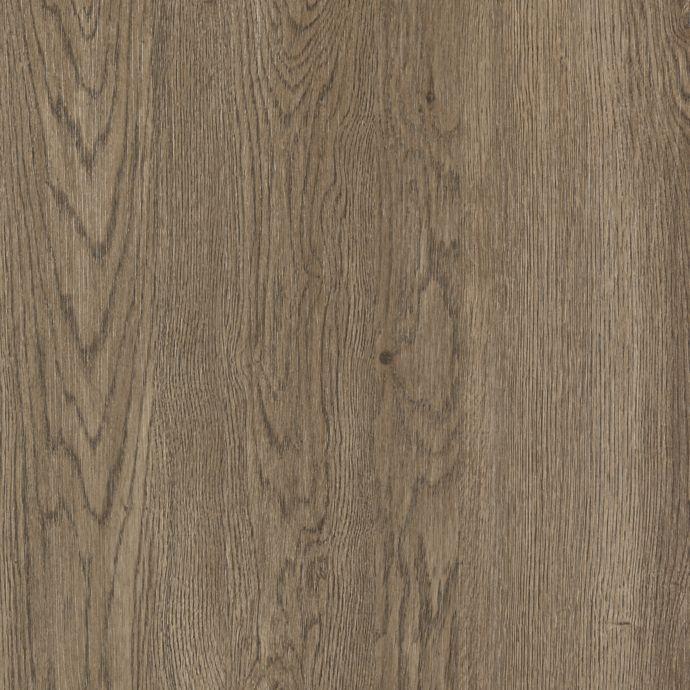 Cavado Truffle Oak 61D05