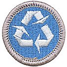 Environmental Science Merit Badge Emblem