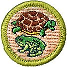 Reptile & Amphibian Study Merit Badge Emblem