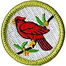 Bird Study Merit Badge Emblem