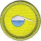 Chemistry Merit Badge Emblem