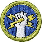 Electricity Merit Badge Emblem