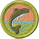 Fishing Merit Badge Emblem