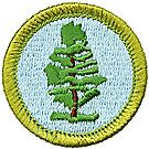 Forestry Merit Badge Emblem