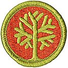 Genealogy Merit Badge Emblem