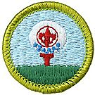 Golf Merit Badge Emblem