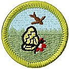 Nature Merit Badge Emblem
