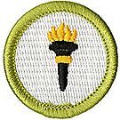 Public Health Merit Badge Emblem