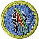 Fly Fishhing Merit Badge Emblem
