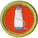 Textile Merit Badge Emblem