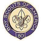 Veteran Scouter Pin