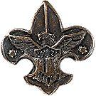 Miniature Universal Emblem Lapel Pin