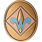 Oval Webelos Coin