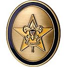 Oval Star Rank Coin