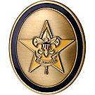 Oval Star Rank Coin
