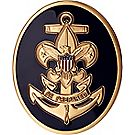 Oval Sea Scouts Coin