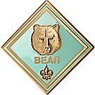 Bear Rank Coin