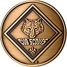 Cub Scout Den Leader Coin