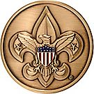 Assistant Leader Scoutmaster Coin