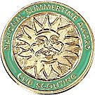 Bear National Summer Time Award Pin
