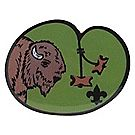 Wood Badge Buffalo Lapel Pin