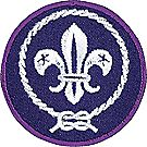 World Scout Crest Emblem