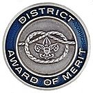 District Award of Merit Lapel Pin